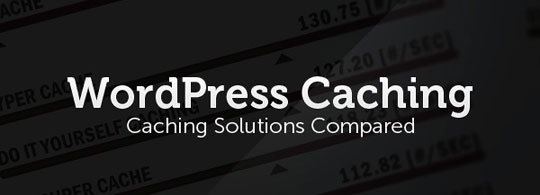 wp-cache-lead
