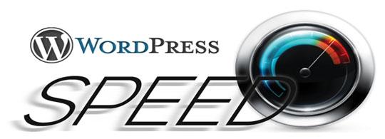 WordPress Speed