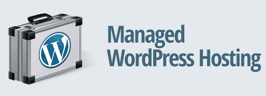 Optimize WordPress Page Speed - Managed WordPress Hosting