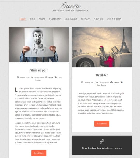Sueva-Responsive-WordPress-Theme
