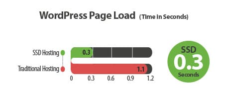 WordPress-Hosting-by-A2-Hosting-Page-Load