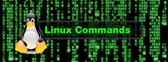 Linux-Basic-Commands
