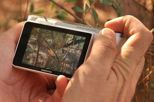 digital-camera-samsung-screen-photography
