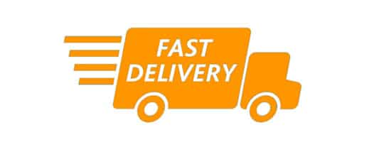 eCommerce Predictions fast delivery