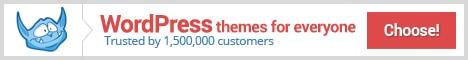 templatemonster-wordpress-468x60