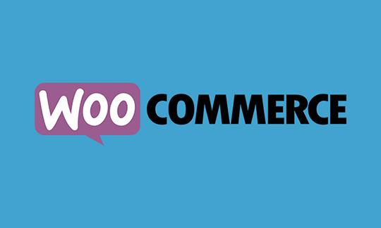 WordPress Baby Store - WooCommerce