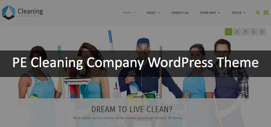 PE Cleaning Company WordPress Theme