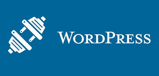 WordPress Mobile Website - WordPress Plugins