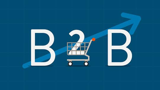 ECommerce Platforms Guiding the Trail for B2B Marketing