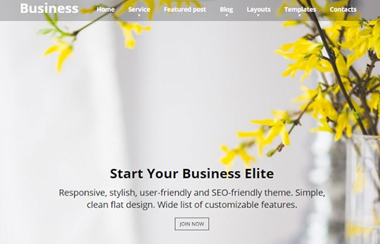 Find a modern and lightweight business theme