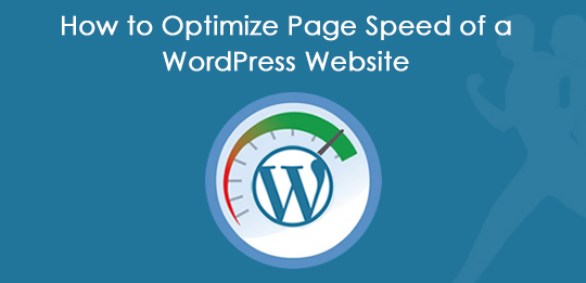 Optimize WordPress Page Speed