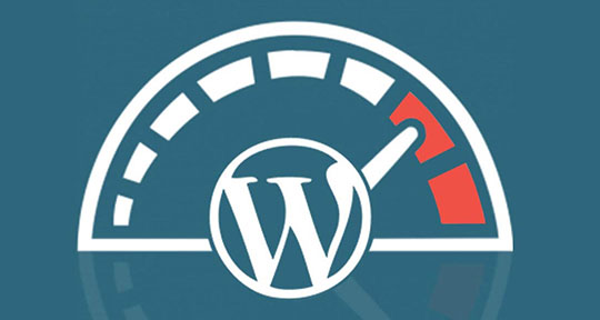 WordPress Speed SEO Optimization