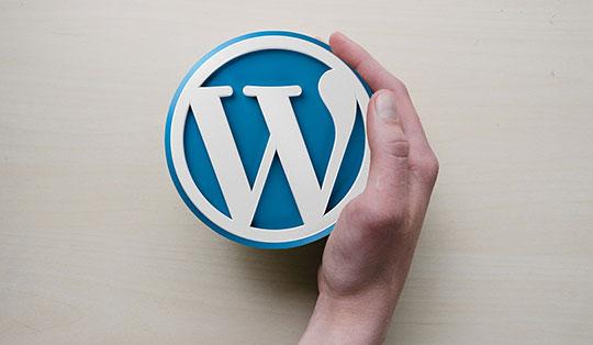 WordPress Security - WordPress-Logo-1