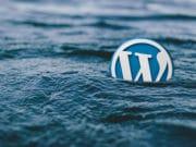 WordPress-Logo-2
