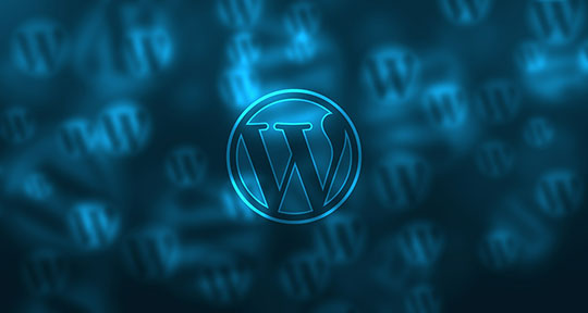 WordPress-Logo-3