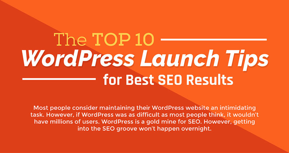 Top 10 WordPress Launch Tips for Best SEO Results (Infographic)
