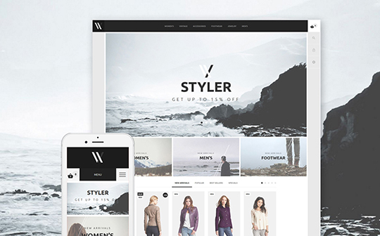 styler-template-templatemonster