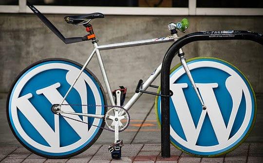 WordPress Rocks