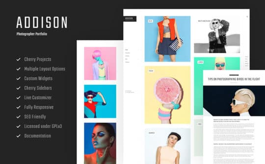 Addison-Bright-and-Creative-WordPress-Photographer-Theme