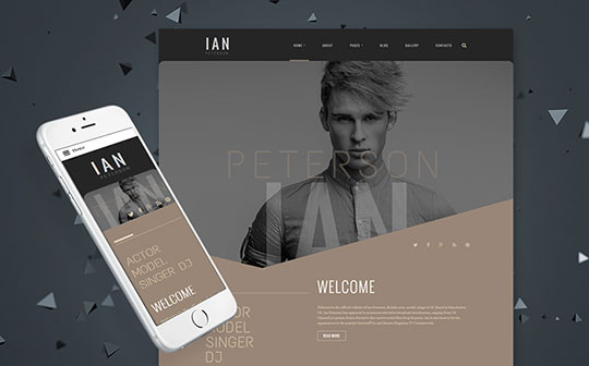Ian-Peterson-Artist-Portfolio-Joomla-Template