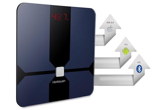 HAMSWAN CF376BLE Smart Scale - 3