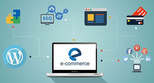 ecommerce-seo-online-payment-wordpress-social