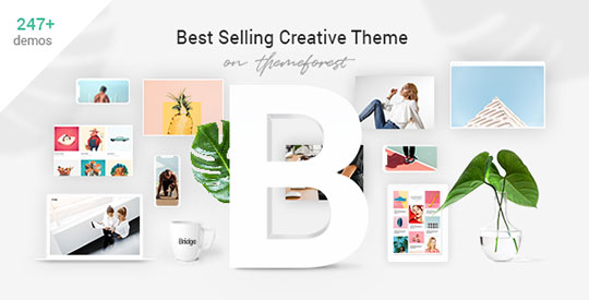 Bridge-WordPress-Theme