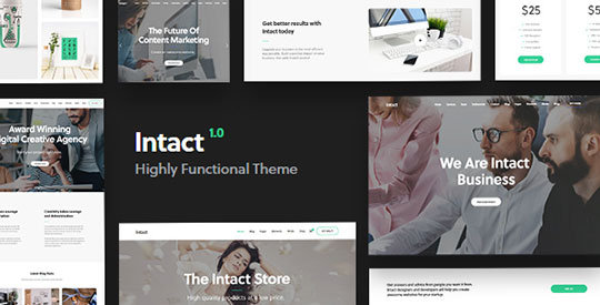 Intact-WordPress-Theme