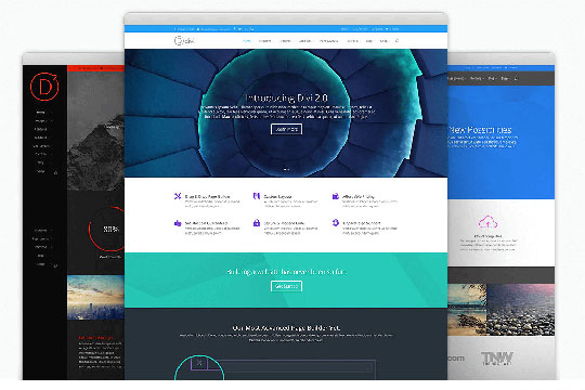 Divi - WordPress Business Themes