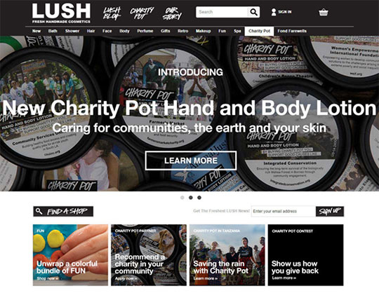 psychographics-marketing-lush-cosmetics-brand-values