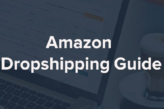 Amazon-Dropshipping-Guide