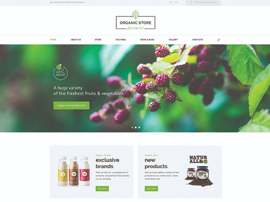 organic-beauty-store-natural-cosmetics