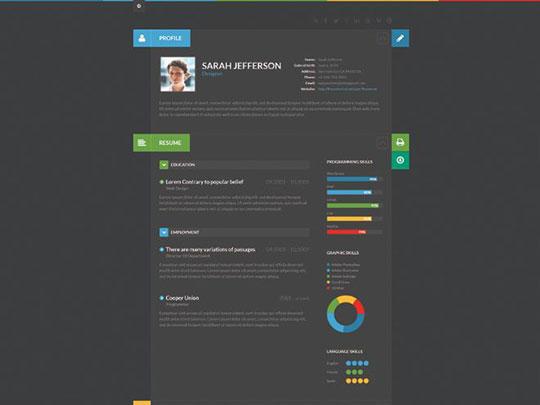 shiftcv-blog-resume-portfolio-wordpress