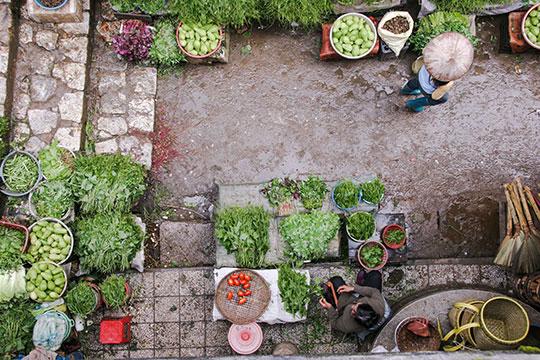 marketplace-shop-food-commerce