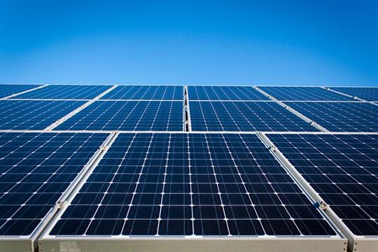 Solar-Plant-Panel-Energy-2