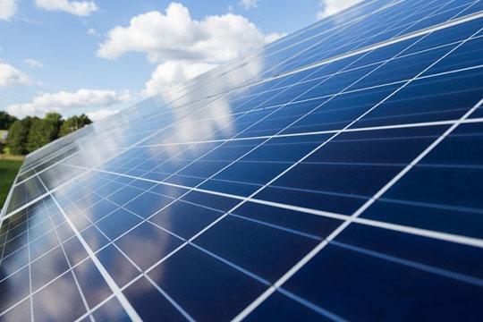 Solar-Plant-Panel-Energy-4