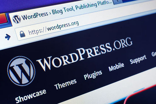 WordPress-website-URL