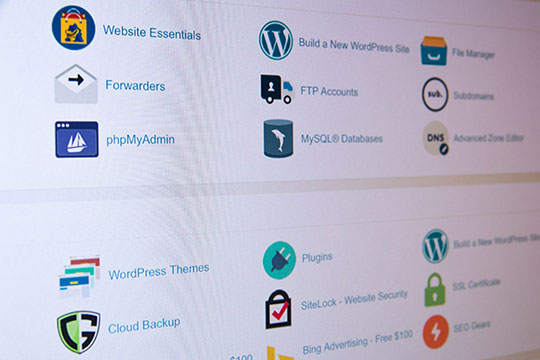 cpanel-website-hosting-control-panel-online-electronics-store-wordpress