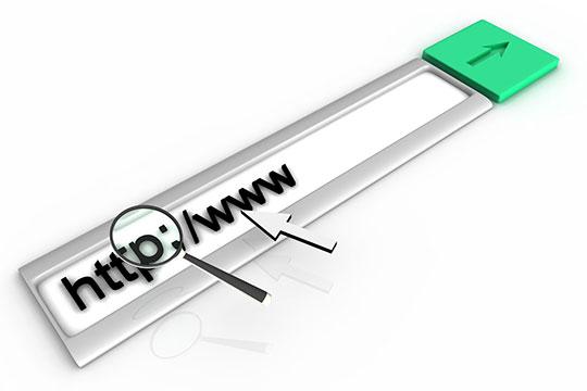 search-box-http-www-domain-url
