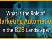 Role of Marketing Automation in B2B Landscape (Infographic)