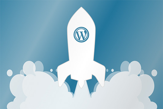 wordpress-hosting-marketing-website-design-development