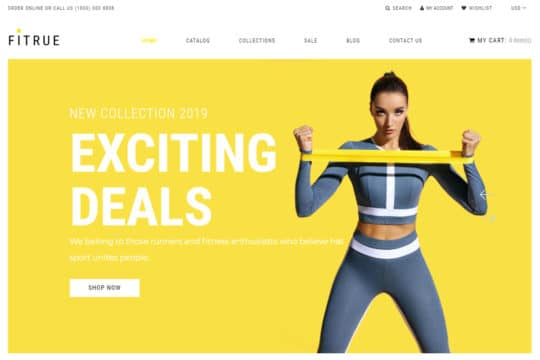 Fitrue-Sports-Store-Multipage-Clean-Shopify-Theme