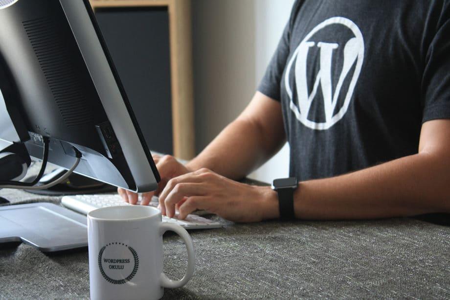 WordPress-designer-developer-coder-programmer