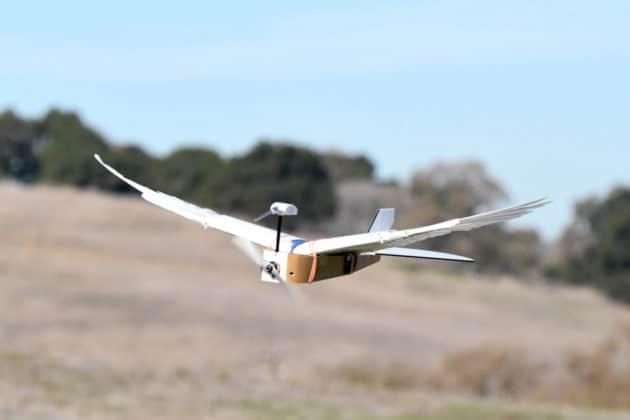 Robot-Birds-tech-inventions